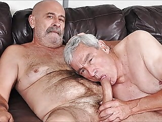 just old cocksuckers bear (gay) big cock (gay) blowjob (gay)
